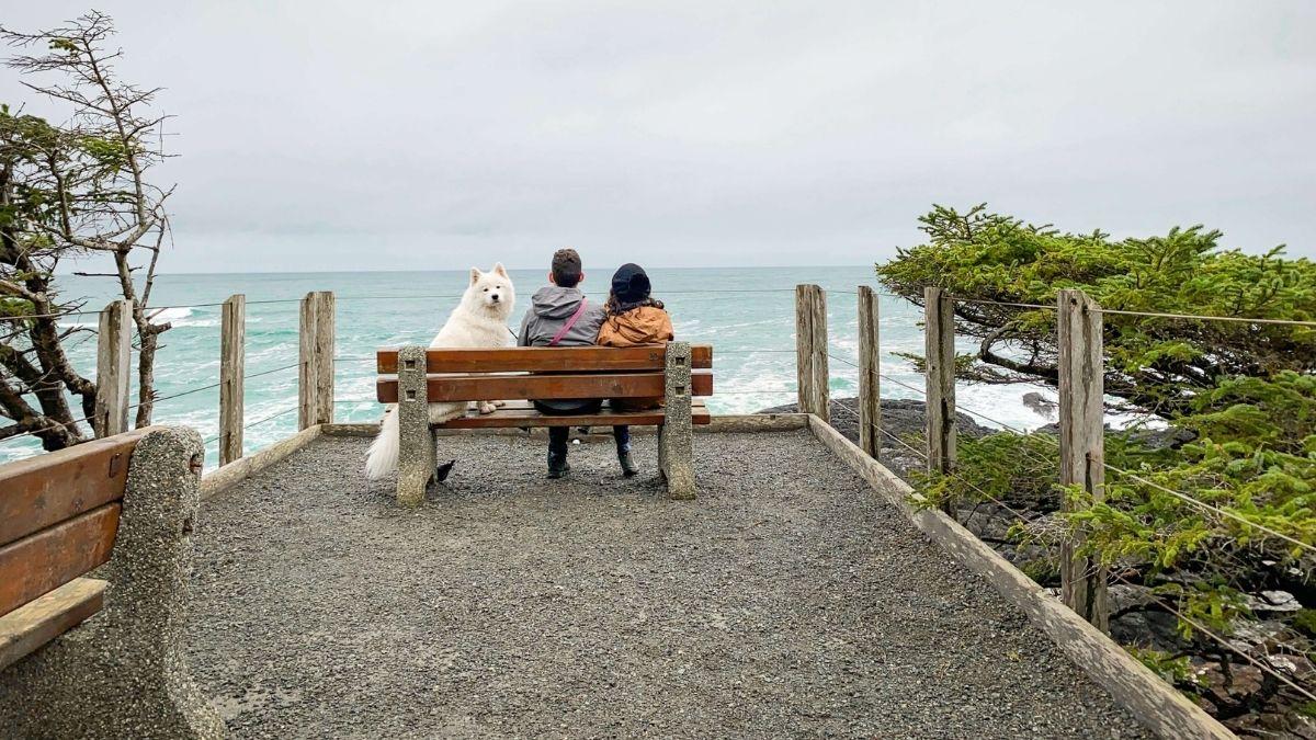 fun date ideas that aren't Netflix and chill